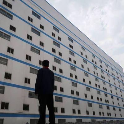 """Les nouvelles """"fermes"""" porcines en Chine comptent sept étages…"""