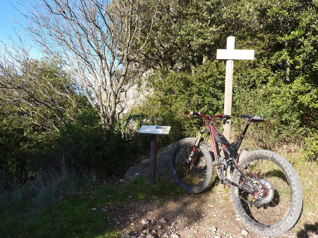 Mont Ste Baudille-Arboras-Rochers des Vierges (34) le 26/12/2018
