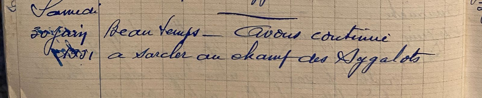 Samedi 30 juin 1951 - continuer à sarcler