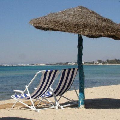 La Tunisia Online: tout savoir sur cette compagnie