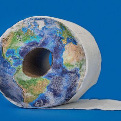 Le papier toilette, ce fléau pour l'environnement