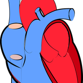 Is COVID-19 Primarily a Heart and Vascular Disease?
