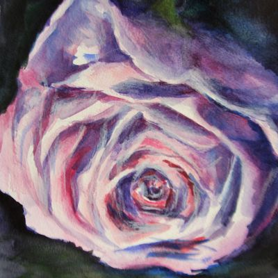 Aquarelle : rose