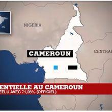 Cameroun : le président Paul Biya officiellement réélu pour un septième mandat consécutif