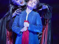 Le Bal des Vampires, un spectacle fascinant et sang pour sang mordant