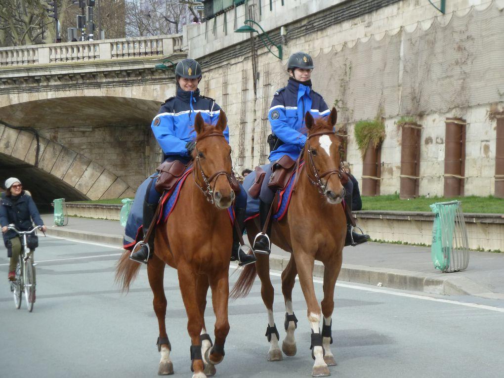 Cœur de Paris, hiver ? printemps ?