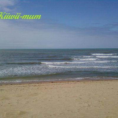 Le Blog De Kiiwii-mum