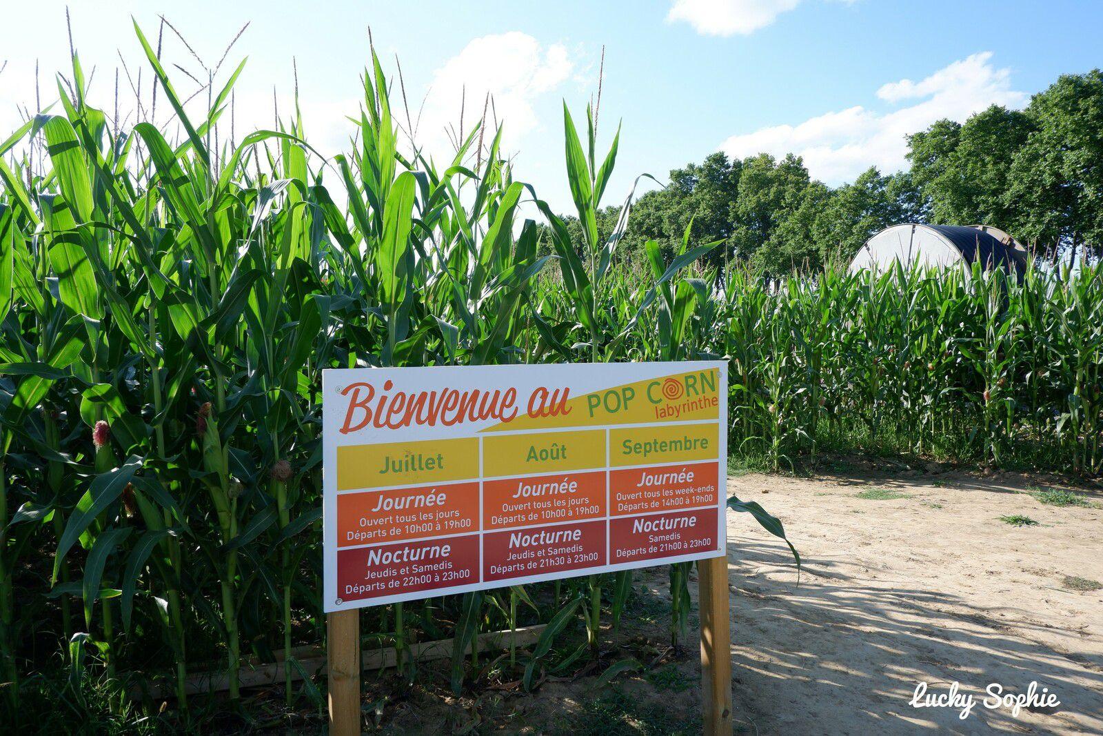 Sortie fun en famille au Pop corn Labyrinthe de maïs