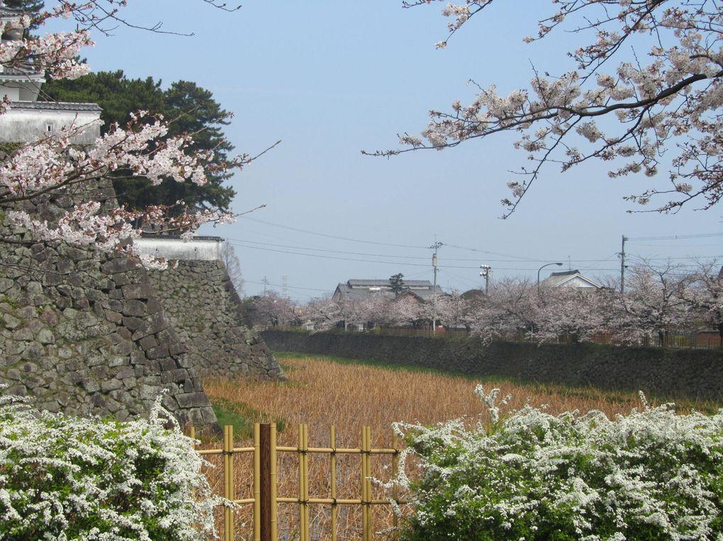 Album - japon-shimabara-jyou