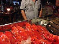 Etalage des poissons et crustacés à griller du restaurant, Barracuda c'est très bon, Jumbo (grosses crevettes),
