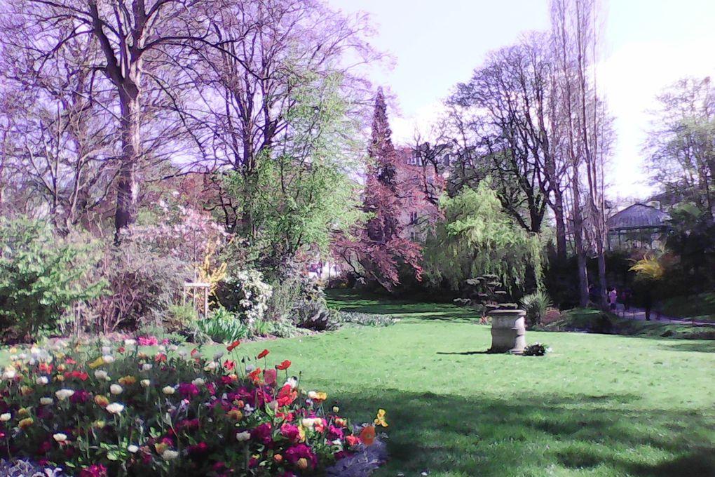 Soleil d'avril au jardin des Batignolles