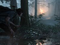 The Last of Us Part II se dévoile en images