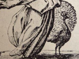 Jacques Callot, Les 7 péchés capitaux, lion d'Ira, paon de Superbia, Cl. Elisabeth Poulain