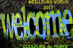 "ANNÉE ""WELCOME"" 2017!"