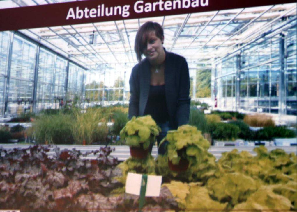 Der Gartenbau befasst sich mit der Erzeugung von Gemüse, Obst, Zierpflanzen und Baumschulgehölzen in Erwerbsbetrieben. Weiterhin gehören zum Gartenbau auch die kompetente Beratung der Kunden zu allen Fragen rund um Garten und Pflanzen, der Friedhofsgartenbau und auch die Staudengärtnerei.
