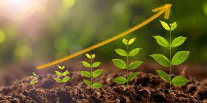 Green and Climate Resilient Development