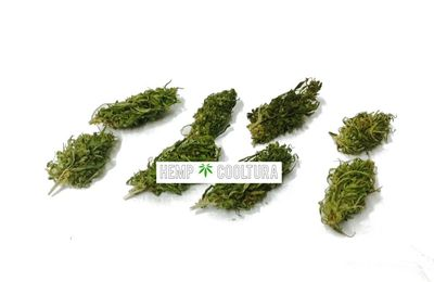 Buy CBD buds - recommended ways to enjoy CBD products