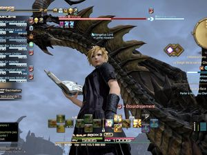 Les combats contre les boss avec 7 autres joueurs sont de grands moments.