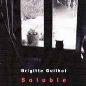 """Parution à L'Ours Blanc : """"Soluble"""", un roman de Brigitte Guilhot - Association L'Ours Blanc"""