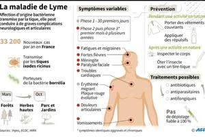 MALADIE DE LYME : LA TRÈS INQUIÉTANTE EXPLOSION DES CAS EN FRANCE