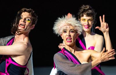 Les Guérillères.  Le burlesque et la dérision comme arme de destruction académique.