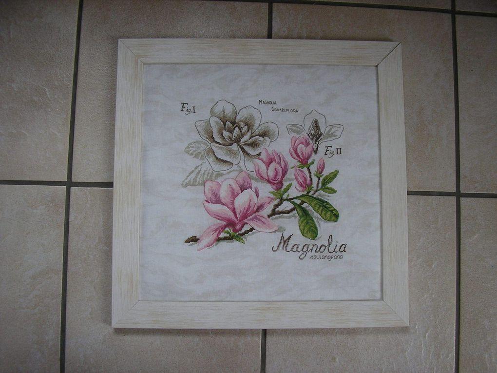 """Etude botanique """"Le Magnolia"""" de Véronique Enginger"""