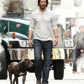 Keanu Reeves takes his pit bull on a lengthy walk for John Wick sequel