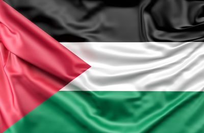 Stop à la guerre ! Stop à la colonisation ! La France doit reconnaître l'État palestinien !