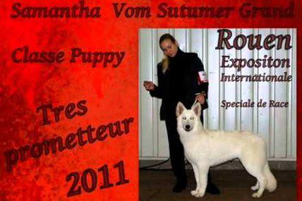 Exposition de rouen DECEMBRE 2011