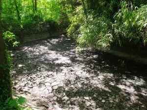 Les lacs et rivières du Bois de Boulogne