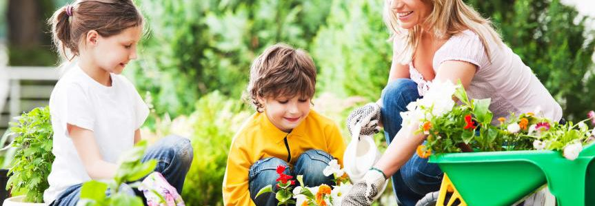 Put Your Green Thumb To Work With These Organic Gardening Tips