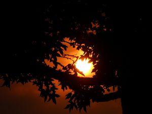 ô soleil