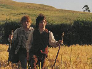 Frodon & Sam