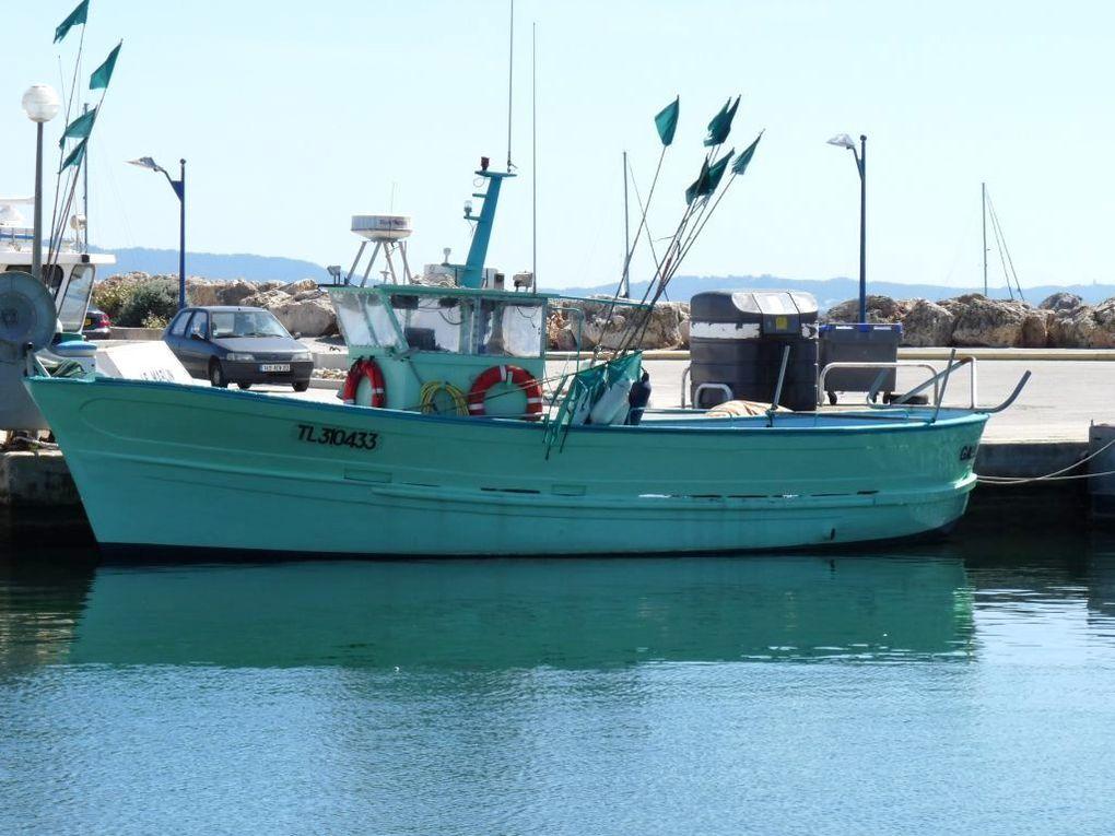 GALILEE TL310433 , dans le port de Hyères