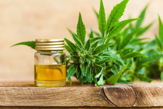 Cbd Oil Benefits - The Reality Is Revealed By Clinical Trials