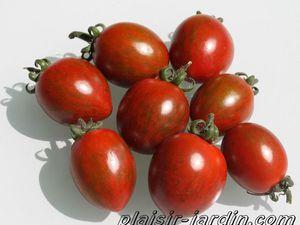 e2. Les tomates cerises