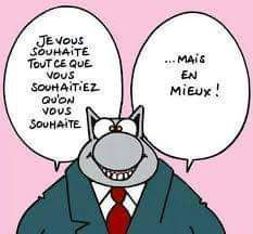 Chat optimiste
