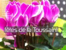 La fête de la Toussaint Narbonne votre fleuriste