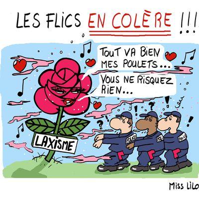 LES FLICS EN COLÈRE !!!