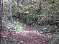 Idées de randonnées pour les tout petits