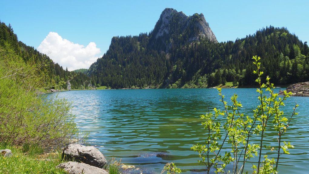 Lac de Taney, en arriére plan, le Tâche (1691m)