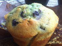 Muffins aux myrtilles sauvages .