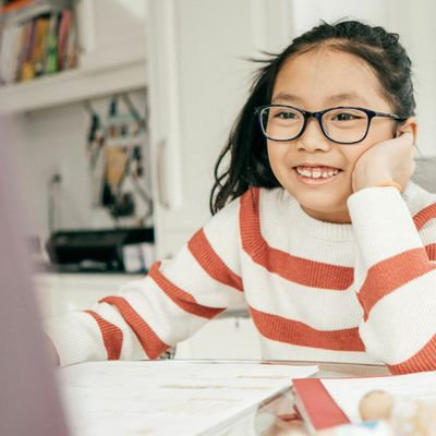 Online Learning: How the Internet Changed School