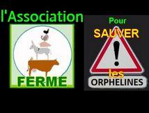 INFOS : Association FERME