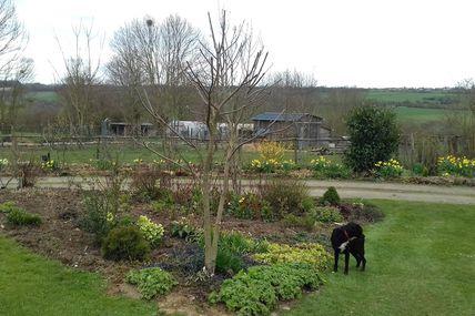 La taille de printemps au jardin des violettes