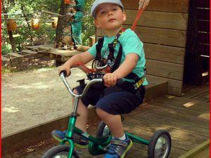 Il y a même des vélos sur le parcours dans les branches !