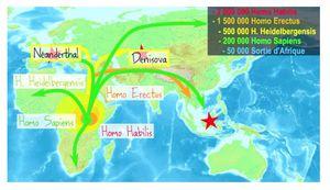 Comment est apparu Homo Sapiens ?