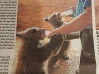 Un zoo qui n'accueil que des animaux maltraités...