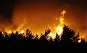 Incendies de Villagerel (3)