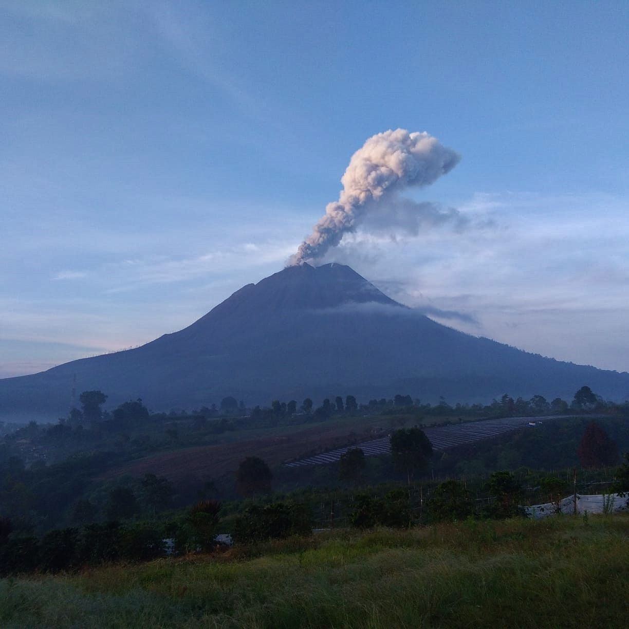 Sinabung - eruptive plume at 700 m. above the summit 19.03.2021 / 06:52 WIB - Doc. Magma Indonesia